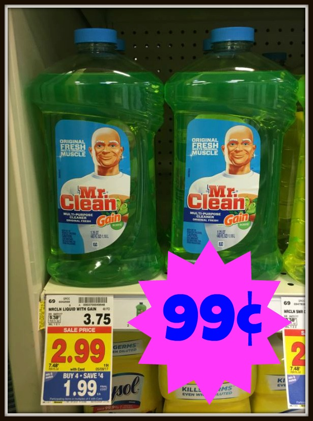 mr clean gain